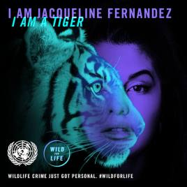 JacquelineFernandez