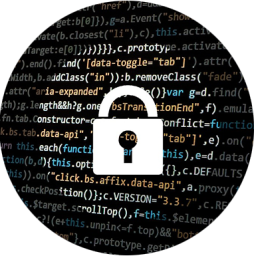 10 claves para proteger la información privada en la red